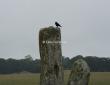Sarcen Stones, Stonehenge