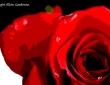Valentine Tears