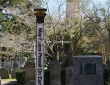 May Peace Prevail On Earth,Charleston