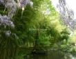 Monet's Rowboat