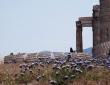 Fallen Column, Athens