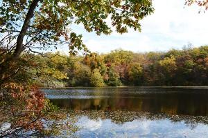 AutumnOnCranberryLake